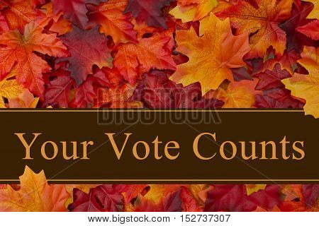 Your vote counts message Some fall leaves with text Your Vote Counts