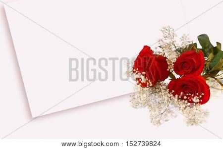 rose love Valentines Day. Rose white background. Red roses. Bouquet of red roses. wedding day background.  Valentines  wedding