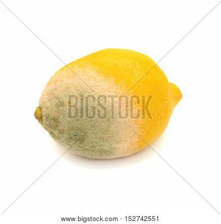 Moldy lemon isolated on white background. Fruit. Flat.