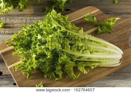 Raw Green Organic Endive Salad