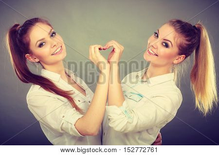 Family and relations. Love affection concept. Two lovely attractive women playing together. Charming playful sisters have fun smiling. Girls making heart sign symbol with hands