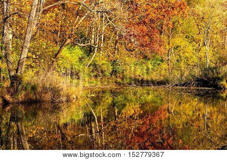 A smooth-as-glass section of the Ohio canal reflects the colors of late autumn