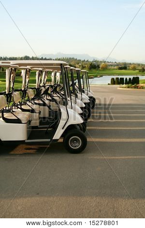 Row of golf carts