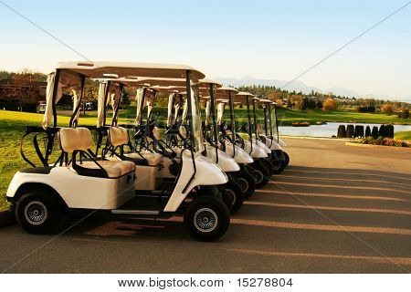 Golf carts, lined up