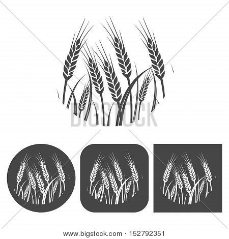 Wheat (Ears of wheat) - vector icons set, black and white