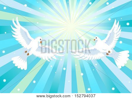 two white doves flying in blue sky, vector