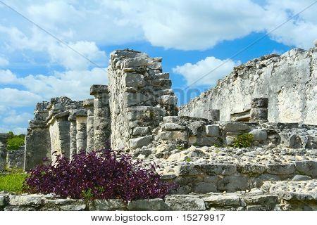 Mayan ruins, Mexico.