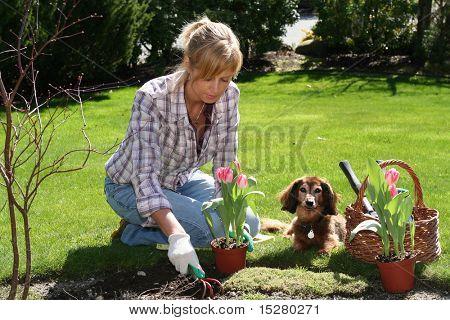 Pretty blond lady enjoying her garden at spring time.