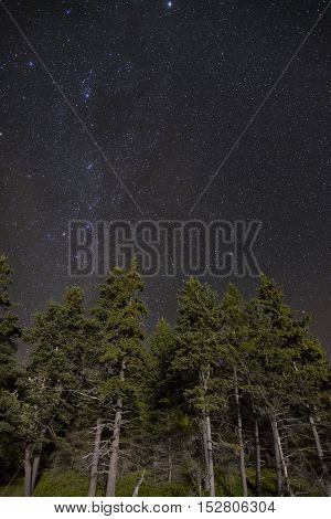 Clear, starlit night in Acadia National park at Sand Beach