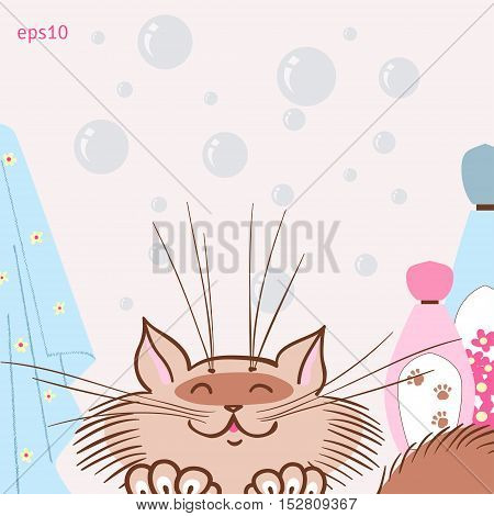 Cat likes to wash. Vector illustration. Bubbles shampoo and towels.