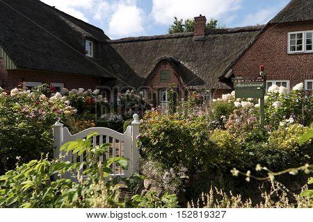 Flower Garden in Northern Frisia in Germany