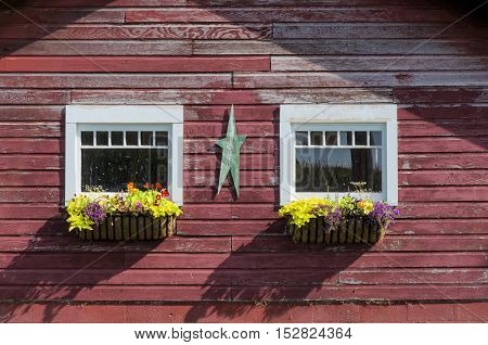 Pretty Flowers in Window Boxes on Barn