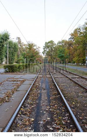 Empty Tram Rail Track In Forest