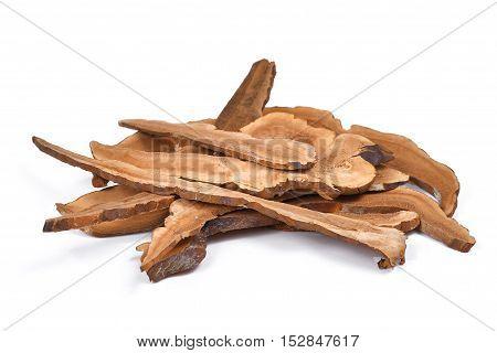 Dried lingzhi mushroom isolated on white background