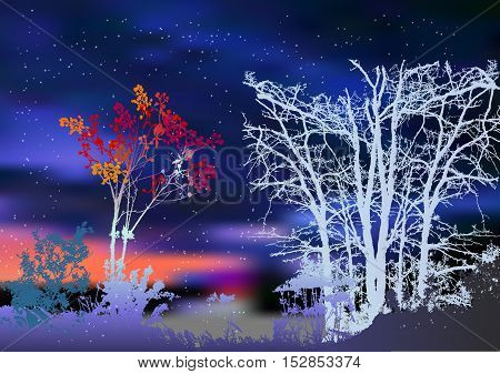 Night winter landscape with snowy trees and plants. Silhouettes of bare trees, bush of rowan and dramatic night sky with flying snowflakes