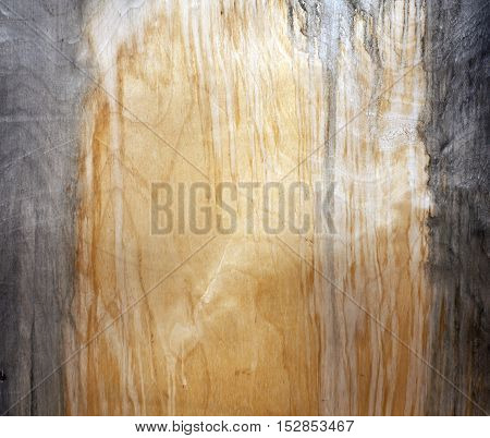 Weathered Fiberboard Texture.