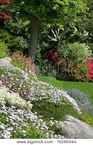 Flowering rock garden in spring. More images of this award winning garden in my portfolio. Also available in horizontal.