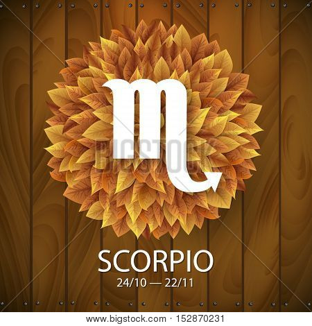 Sign of the zodiac. Scorpio horoscope. white sign with a circle of autumn leaves. Wooden planks background.