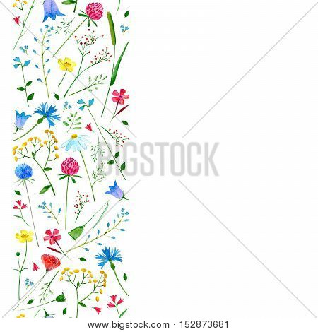 Seamless border from meadow flowers.Buttercup,poppy,clover,cornflower,bell,tansy,chamomile and berry.Watercolor hand drawn illustration.White background.