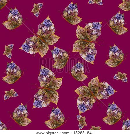 Background Made Of Butterflies Of Various Flowers
