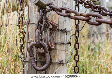 Rusty chain and lock on fense post in field of long grass