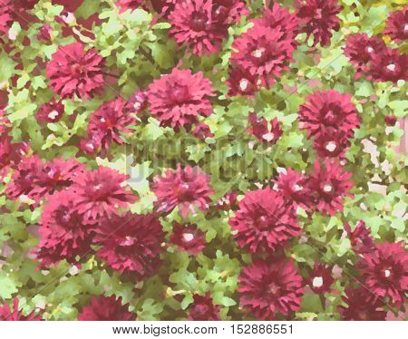Positive summer floral / blur / background. Bright colors of sunny summer days. Red flowers and green leaves. Pattern. flowers