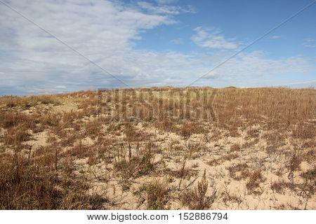 Sand dunes of Sleeping Bear Dunes National Lakeshore, Michigan