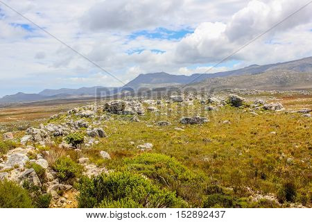 Landscape of Cape of Good Hope Natural Reserve in Cape Peninsula. The Cape of Good Hope is a section of Table Mountain National Park the top tourist destinations in South Africa.