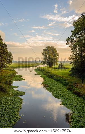 Small meandering stream in a Dutch rural landscape early in the morning of a sunny day in the beginning of the fall season.