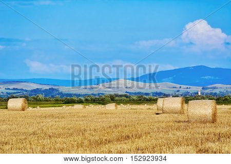 Rural Landscape with Haystacks on the Field