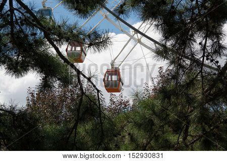 Close up view of Ferris wheel through tree brunches with blue sky as background