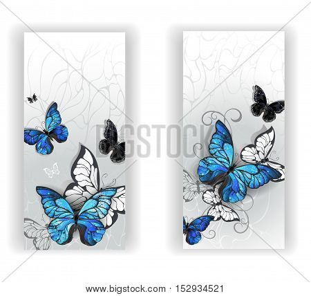 Two banners with blue butterflies morpho and black butterflies on gray textural background. Morpho. Design with blue butterflies morpho.