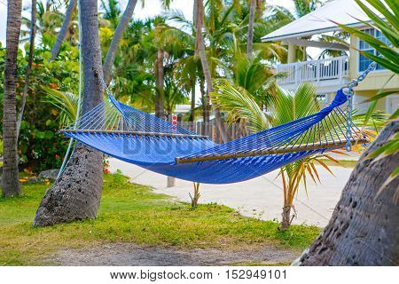 Tropical resort with chaise longs and hammocks near palms on sandy beach, Key West, Florida, USA