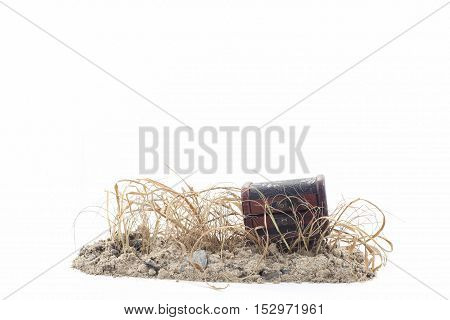 treasure Chest on the soil with dry grasswhite background
