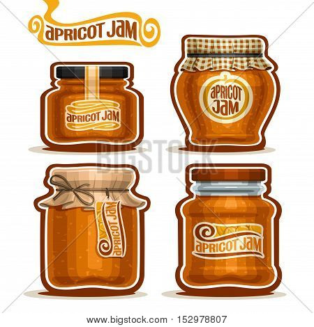 Vector logo Apricot Jam in glass Jars with paper cover lid, rustic Pot home made apricot jams, twine rope bow, set homemade fruit jam jar, jelly pot with label, checkered cloth cap, isolated on white.