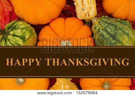 Happy Thanksgiving Greeting Some fall leaves and pumpkins and gourds with text Happy Thanksgiving