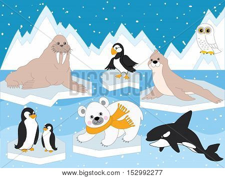 Vector arctic set with polar animals and polar birds
