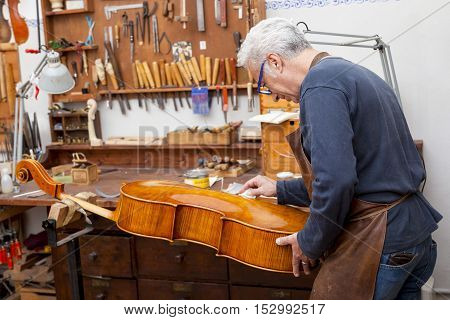 Portrait Of Mature Violin Maker While Testing The Violins In His Laboratory