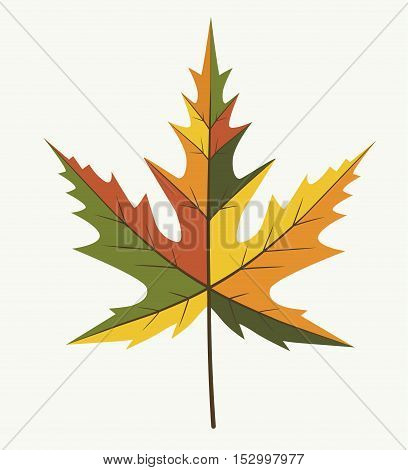 Leaf Different Autumn Color - Vector Flat Stock