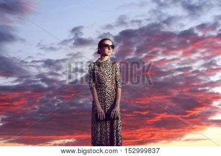 Fashion Elegant Woman In Dress With Leopard Print Over Evening Sunset Sky With Clouds Landscape Back