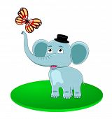 fun elephant with butterfly poster