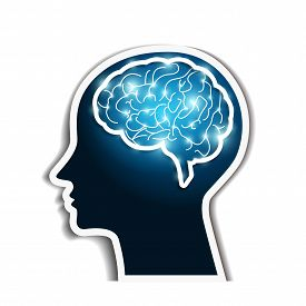 Human brain on white background. Medical concept