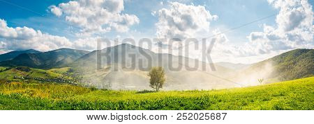 Panorama Of Beautiful Mountainous Countryside. Tree On The Hill Side In Smoke From Fire In The Valle