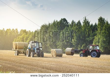 Agricultural Machinery On A Chamfered Golden Field Moves Bales Of Hay After Harvesting Grain Crops.
