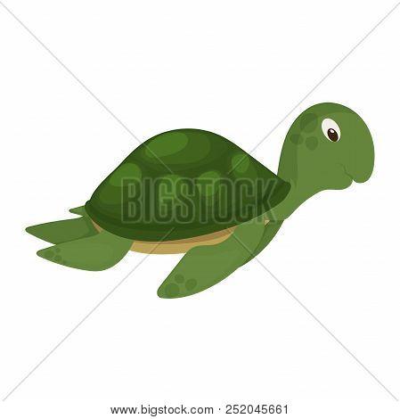 Sea Turtle Green Ocean Animal Nature Underwater Wildlife Marine Character Vector Illustration. Swimm