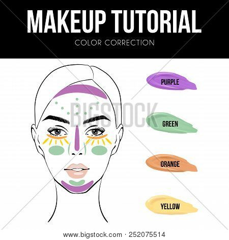 Makeup Tutorial: How To Use Color Correcting Concealer. Vector Illustration Of Woman Face Chart And