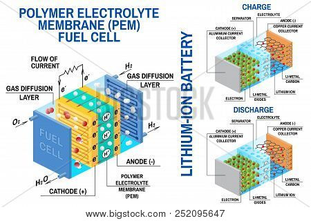 Fuel Cell And Li-ion Battery Diagram. Vector. Device That Converts Chemical Potential Energy Into El