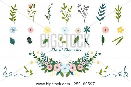 Colorful Hand Drawn Floral Elements. Vector Illustration.