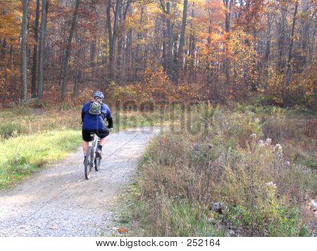 Bikeronparktrail