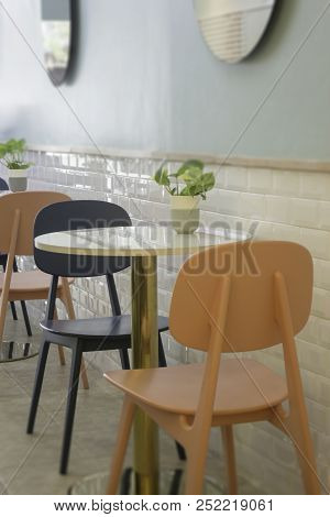 Indoor Plant On Coffee Shop Table, Stock Photo